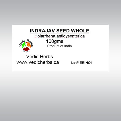 Indrajav Seed Whole
