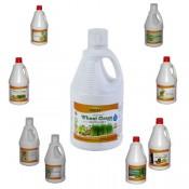 Ayurvedic Juices (62)